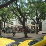 Vorbildlich nachhaltig: die Azoren