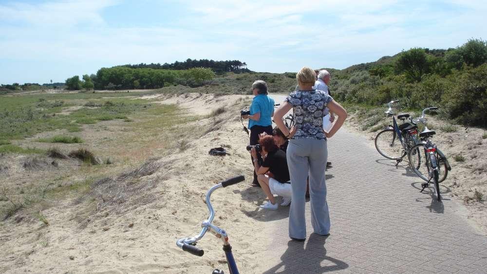 Dänemark-Ferienhausboom: schon jetzt Buchungsrekorde für 2019