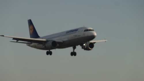 Ex-Flugunternehmer Niki Lauda wettert im Interview gegen Lufthansa und Bundesregierung