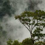 Peru - Chachapoyas und seine Umgebung