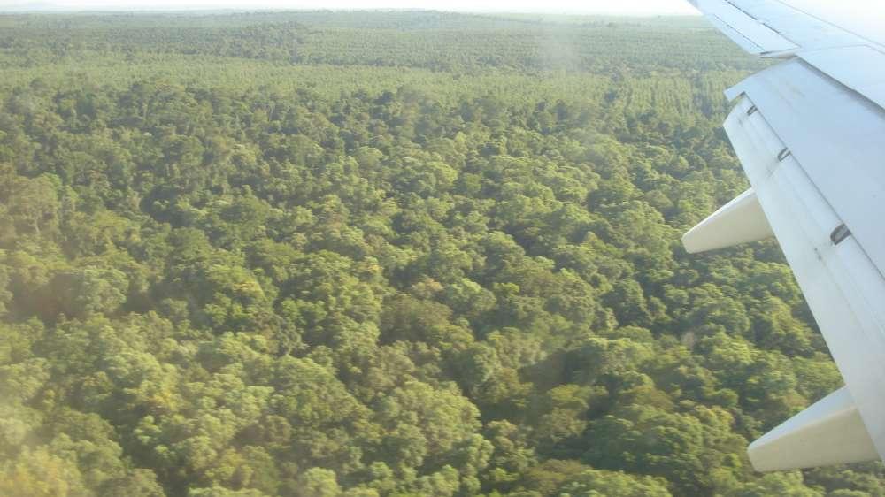 Philippinen – Vielfalt im Regenwald