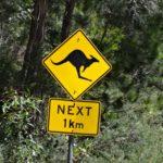 Flying Doctors in Australien, mit Rangern durchs Dartmoor: Studiosus-Magazin jetzt auch online