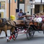 Palmas Pferdekutschen