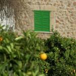Finca-Urlaub auf Mallorca laut Umfrage am beliebtesten