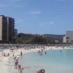 Haie, Quallen, Klopapier: Die Wasserqualität auf Mallorca bleibt problematisch